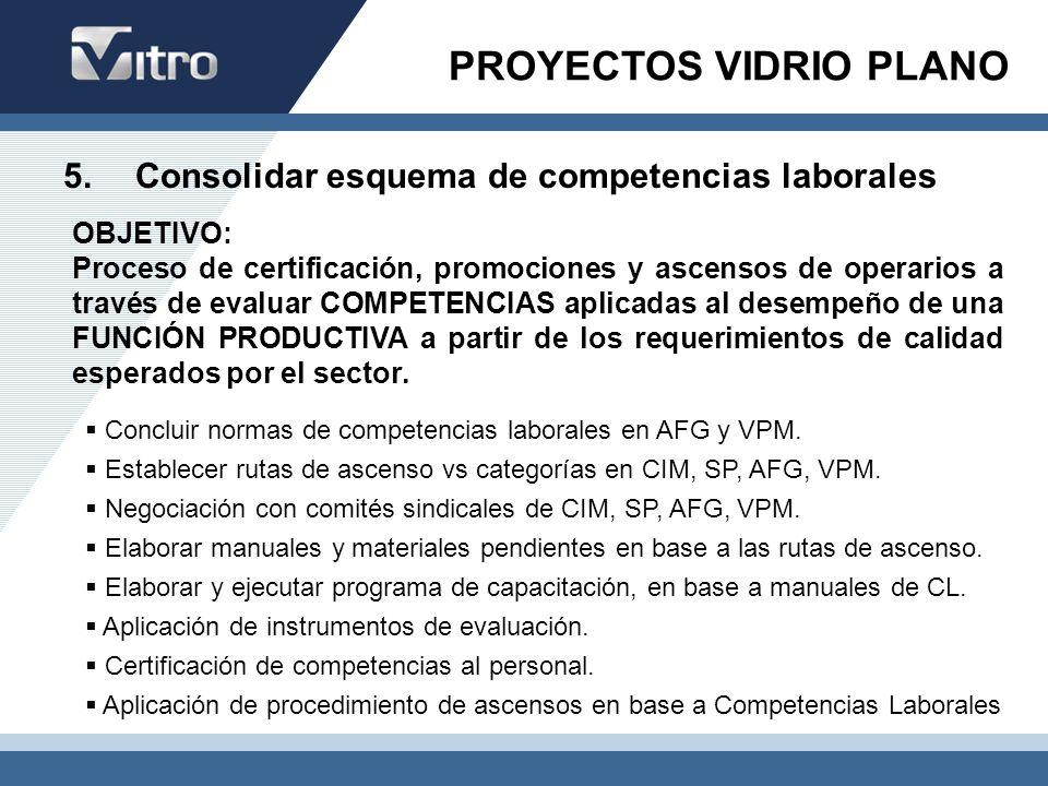 5. Consolidar esquema de competencias laborales Concluir normas de competencias laborales en AFG y VPM. Establecer rutas de ascenso vs categorías en C