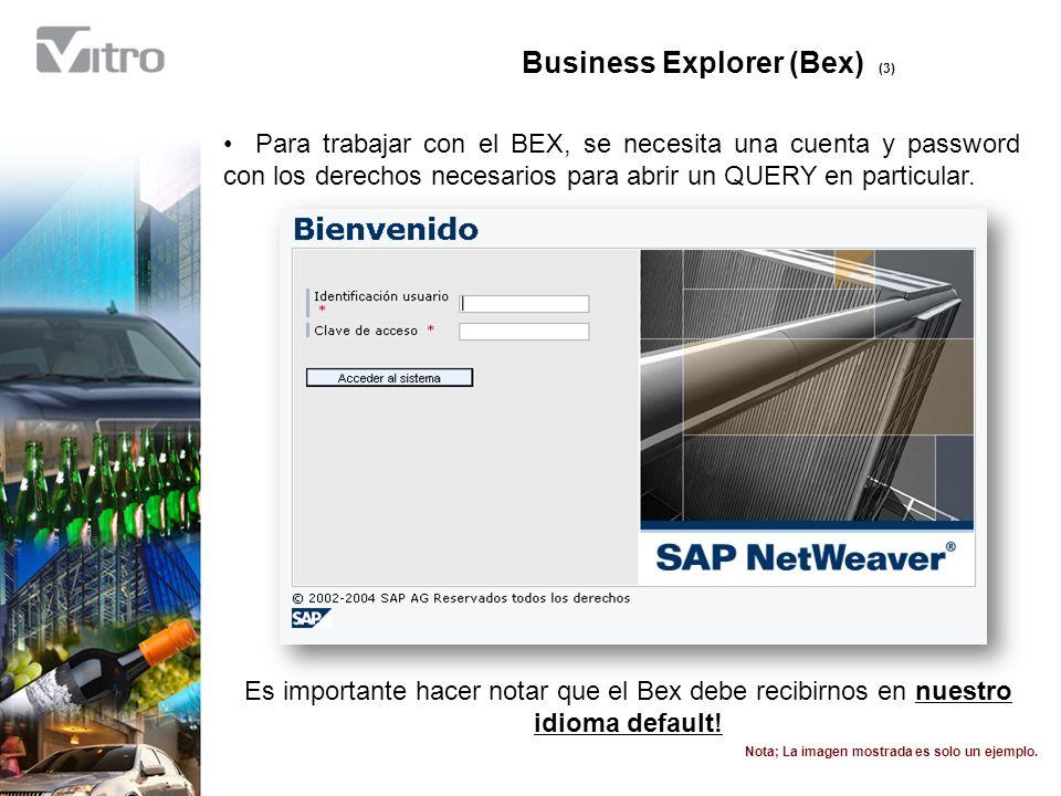 Business Explorer (Bex) (7) Dependiendo del diseño original del Query, se nos puede pedir alimentar algún valor inicial para acotar la información.