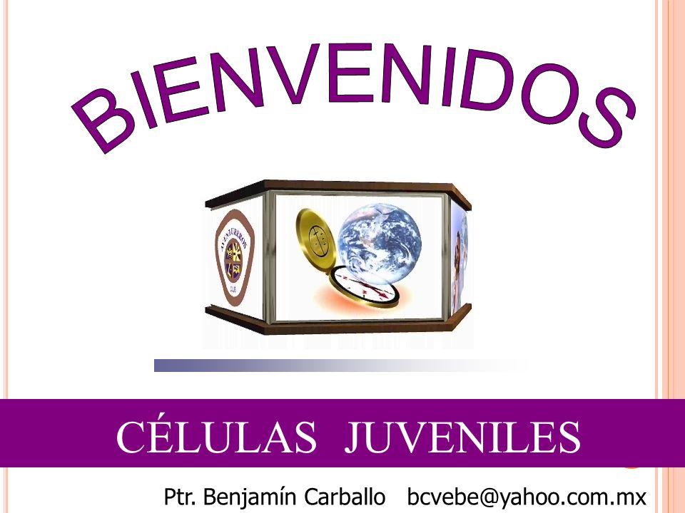 CÉLULAS JUVENILES Ptr. Benjamín Carballo bcvebe@yahoo.com.mx