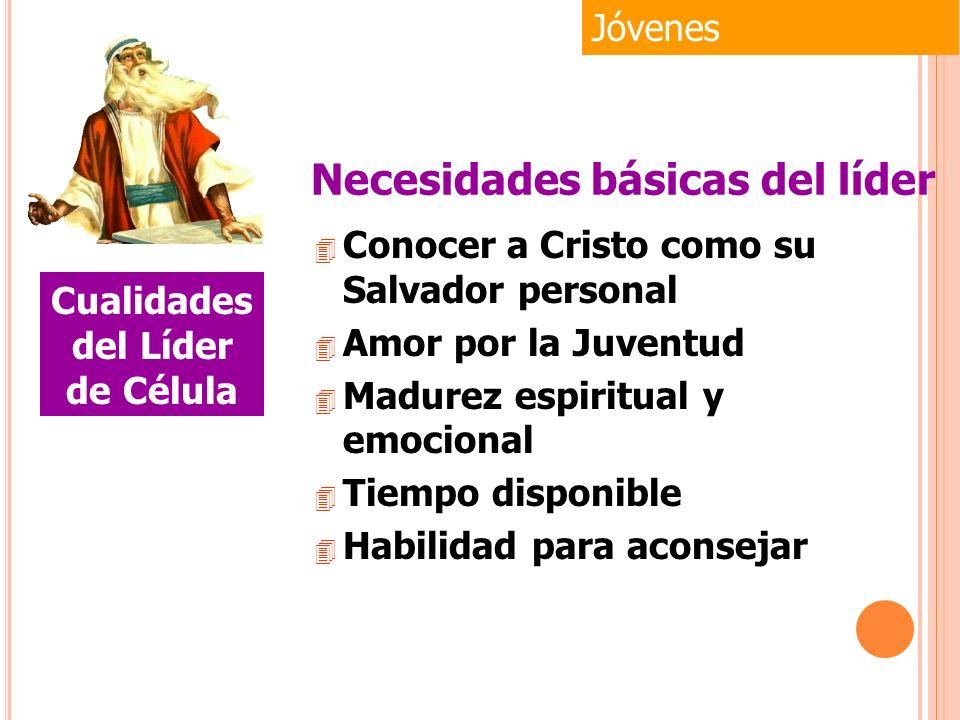 4 Conocer a Cristo como su Salvador personal 4 Amor por la Juventud 4 Madurez espiritual y emocional 4 Tiempo disponible 4 Habilidad para aconsejar Jó