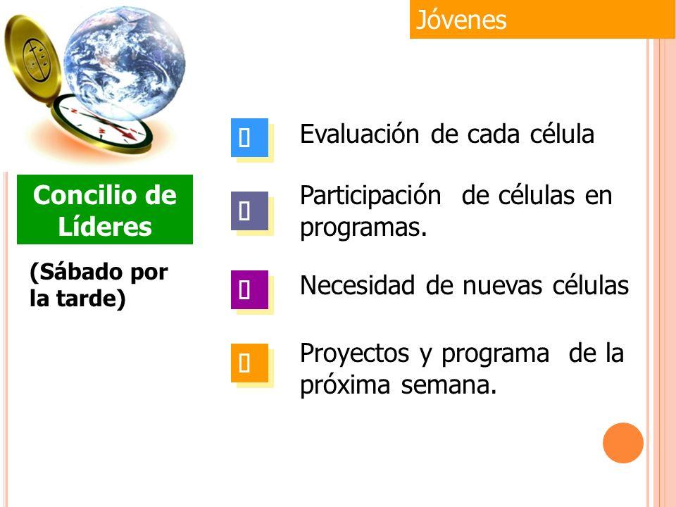 Jóvenes (Sábado por la tarde) Concilio de Líderes Evaluación de cada célula Participación de células en programas. Necesidad de nuevas células Proyect