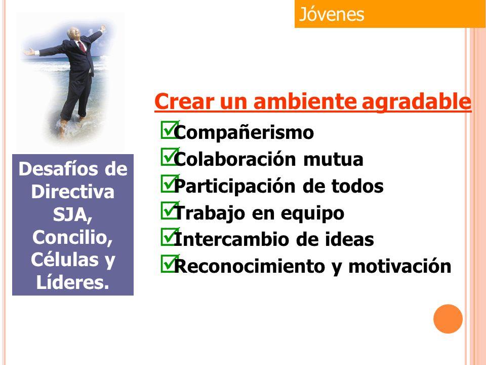 Compañerismo Colaboración mutua Participación de todos Trabajo en equipo Intercambio de ideas Reconocimiento y motivación Jóvenes Desafíos de Directiv