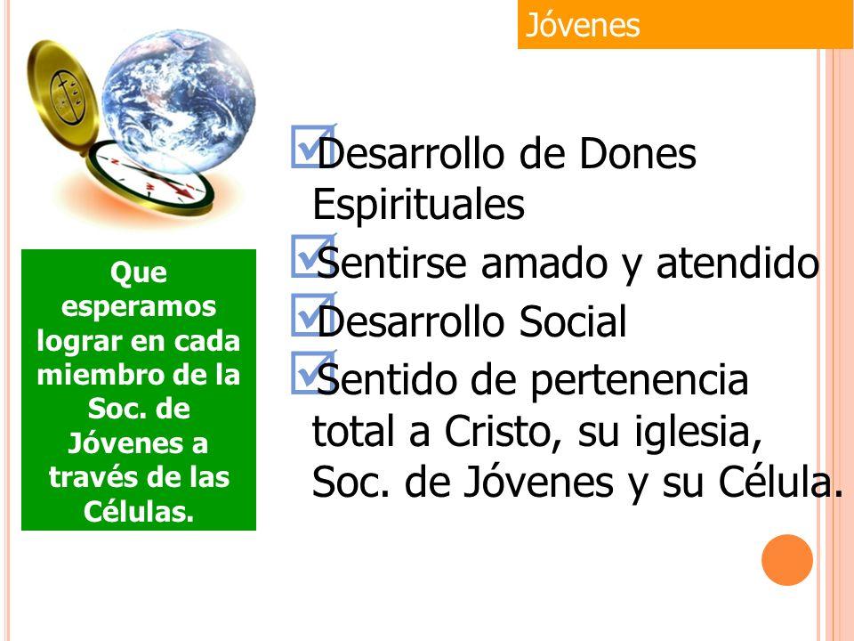 a) Actividades recreativas b) Actividades sociales c) Actividades Deportivas d) Actividades de Campismo e) Asistir a las Federaciones de Jóvenes Jóvenes Compañerismo