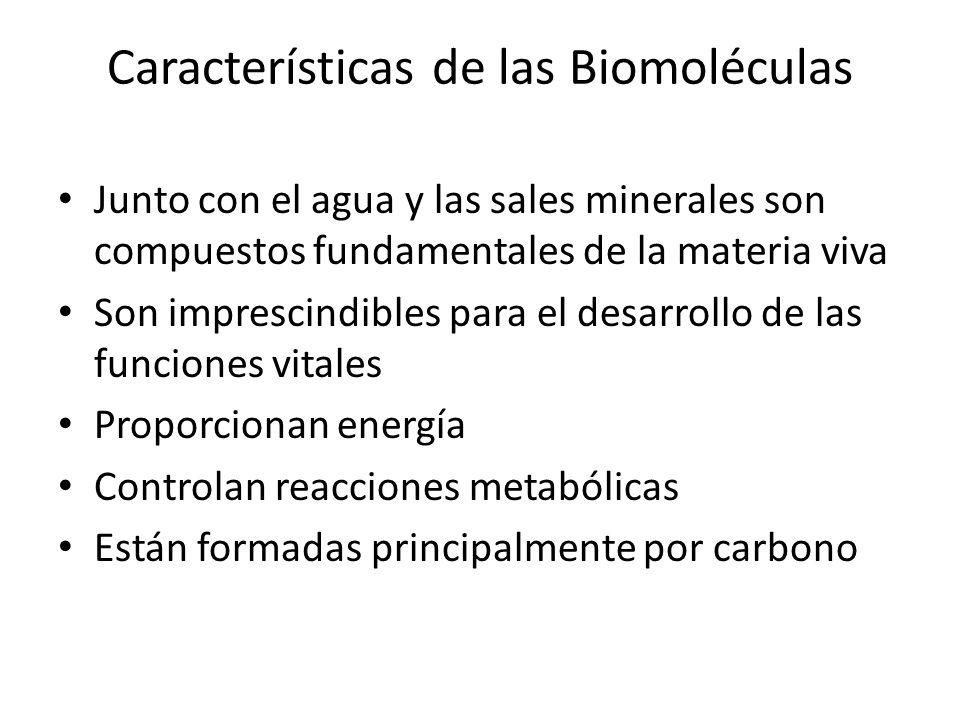 Características de las Biomoléculas Junto con el agua y las sales minerales son compuestos fundamentales de la materia viva Son imprescindibles para e