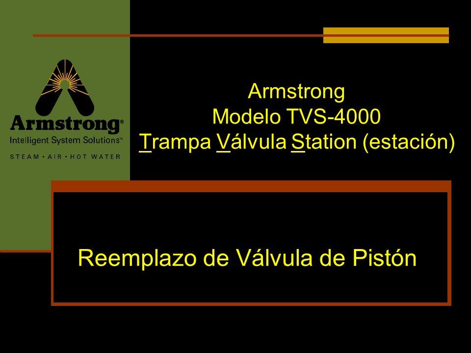 Armstrong Modelo TVS-4000 Trampa Válvula Station (estación) Reemplazo de Válvula de Pistón