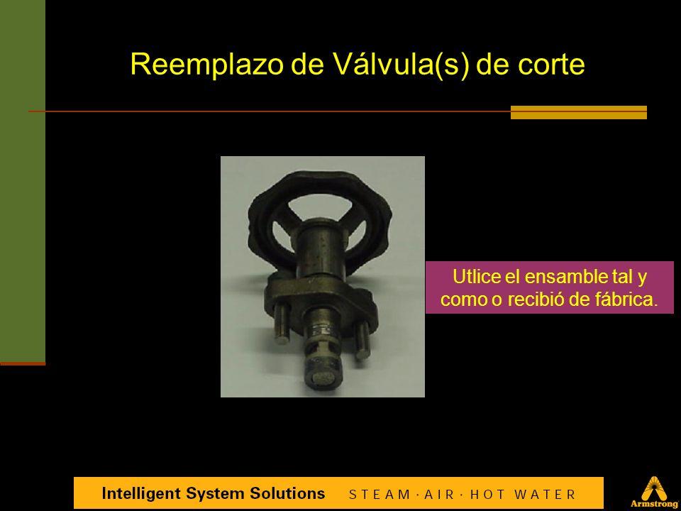 Asegurarse de quitar TODOS los componentes existentes Reemplazo de Válvula(s) de corte