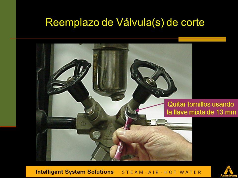 Herramientas requeridas Llave mixta o española (1) Reemplazo de Válvula de Prueba (Test Valve)