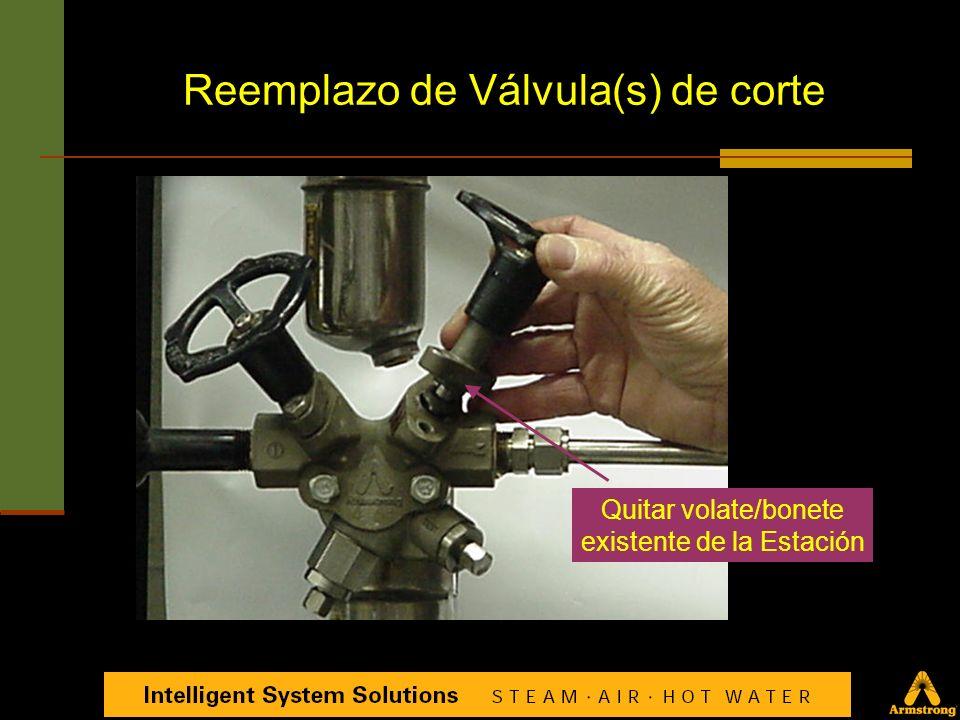 Quitar tornillos usando la llave mixta de 13 mm Reemplazo de Válvula(s) de corte