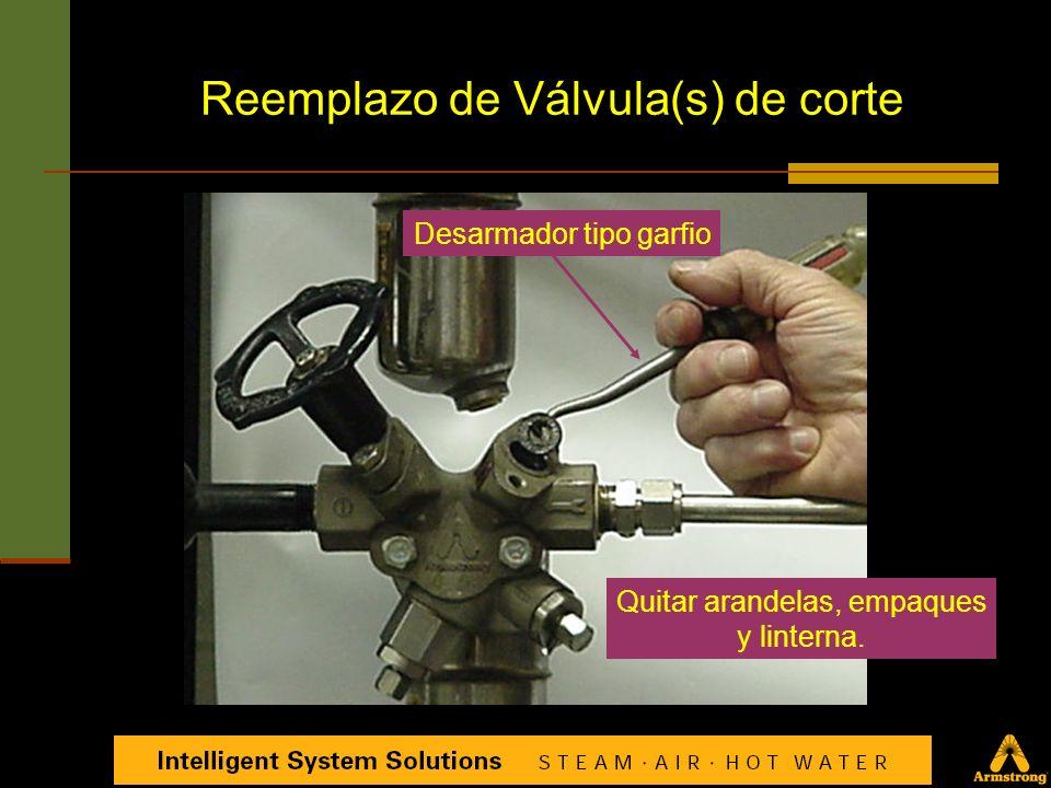Válvula de Prueba es rosca izquierda Girar EN SENTIDO de las Manecillas del reloj para aflojar y quitar Reemplazo de Válvula de Prueba (Test Valve)