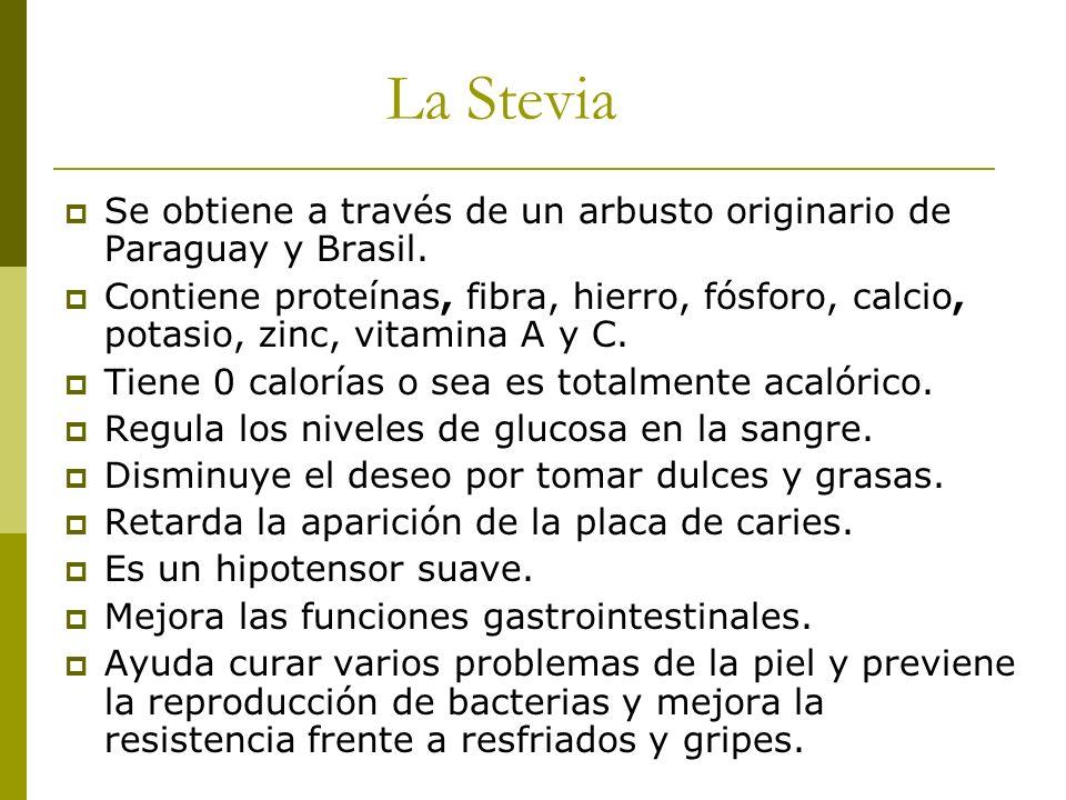 La Stevia Se obtiene a través de un arbusto originario de Paraguay y Brasil. Contiene proteínas, fibra, hierro, fósforo, calcio, potasio, zinc, vitami