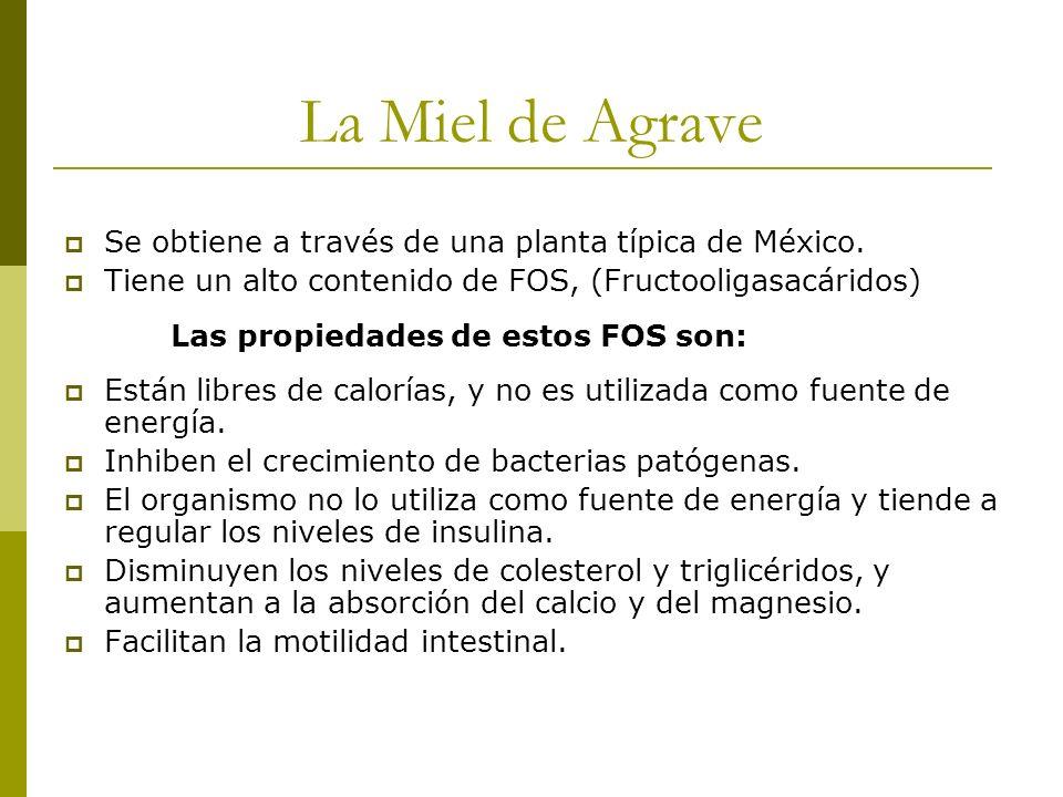 La Miel de Agrave Se obtiene a través de una planta típica de México. Tiene un alto contenido de FOS, (Fructooligasacáridos) Las propiedades de estos