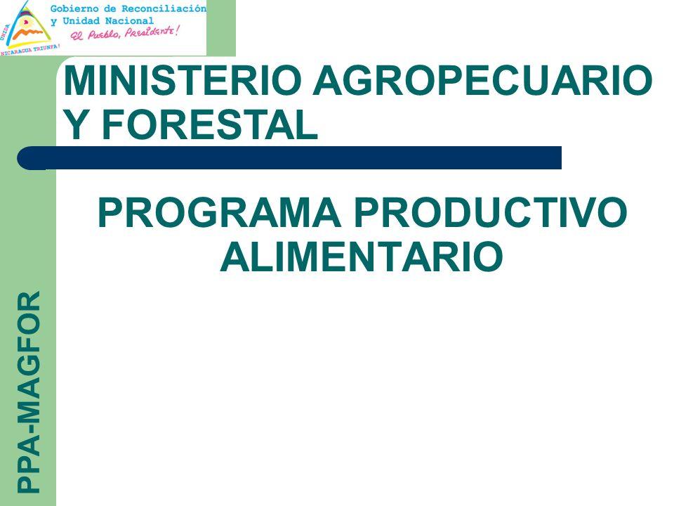 PROGRAMA PRODUCTIVO ALIMENTARIO MINISTERIO AGROPECUARIO Y FORESTAL PPA-MAGFOR