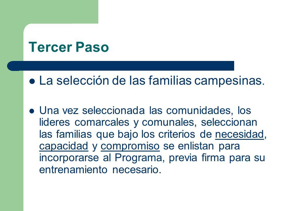 Tercer Paso La selección de las familias campesinas. Una vez seleccionada las comunidades, los lideres comarcales y comunales, seleccionan las familia