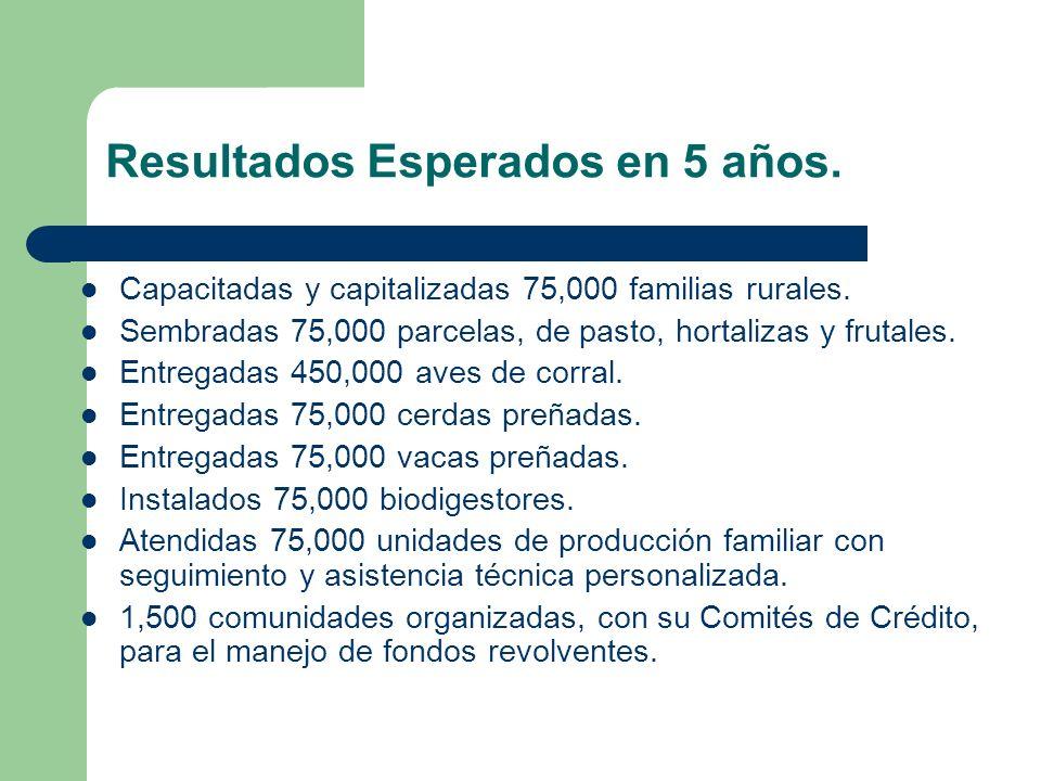Resultados Esperados en 5 años. Capacitadas y capitalizadas 75,000 familias rurales. Sembradas 75,000 parcelas, de pasto, hortalizas y frutales. Entre