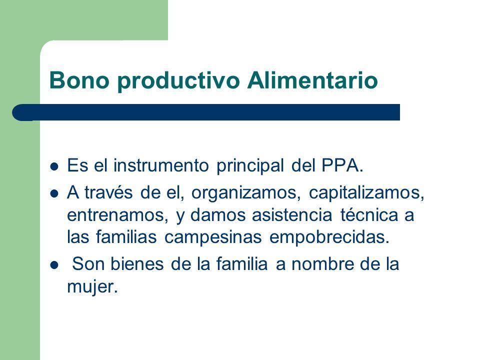Bono productivo Alimentario Es el instrumento principal del PPA. A través de el, organizamos, capitalizamos, entrenamos, y damos asistencia técnica a