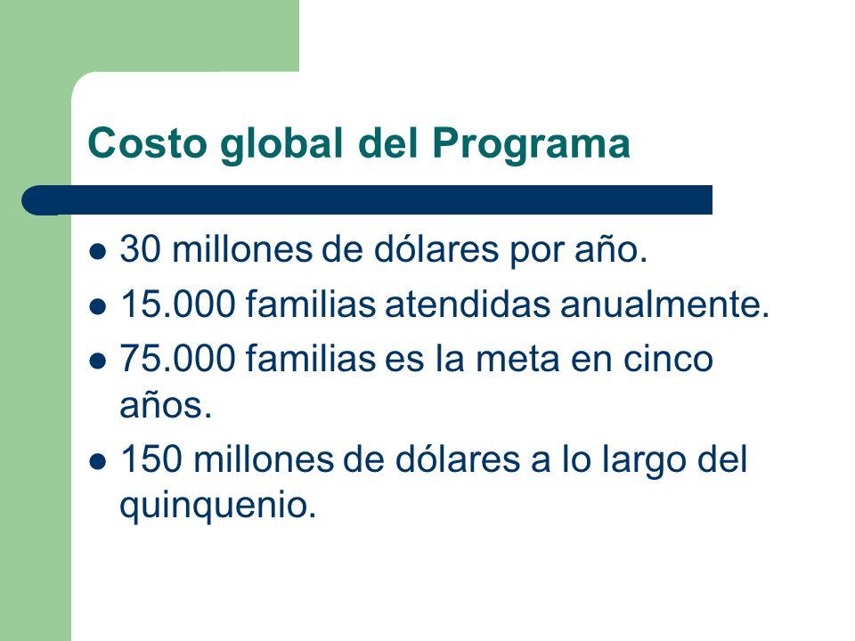 Costo global del Programa 30 millones de dólares por año. 15.000 familias atendidas anualmente. 75.000 familias es la meta en cinco años. 150 millones
