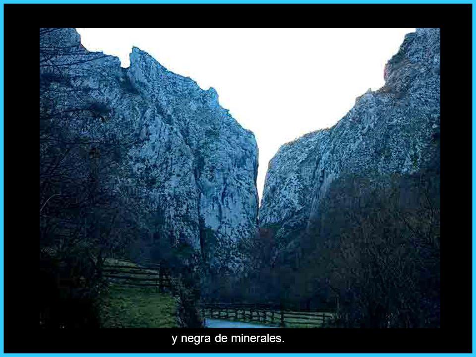Asturias verde de montes