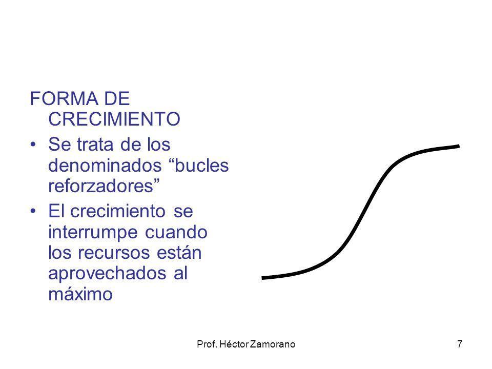 Prof. Héctor Zamorano7 FORMA DE CRECIMIENTO Se trata de los denominados bucles reforzadores El crecimiento se interrumpe cuando los recursos están apr