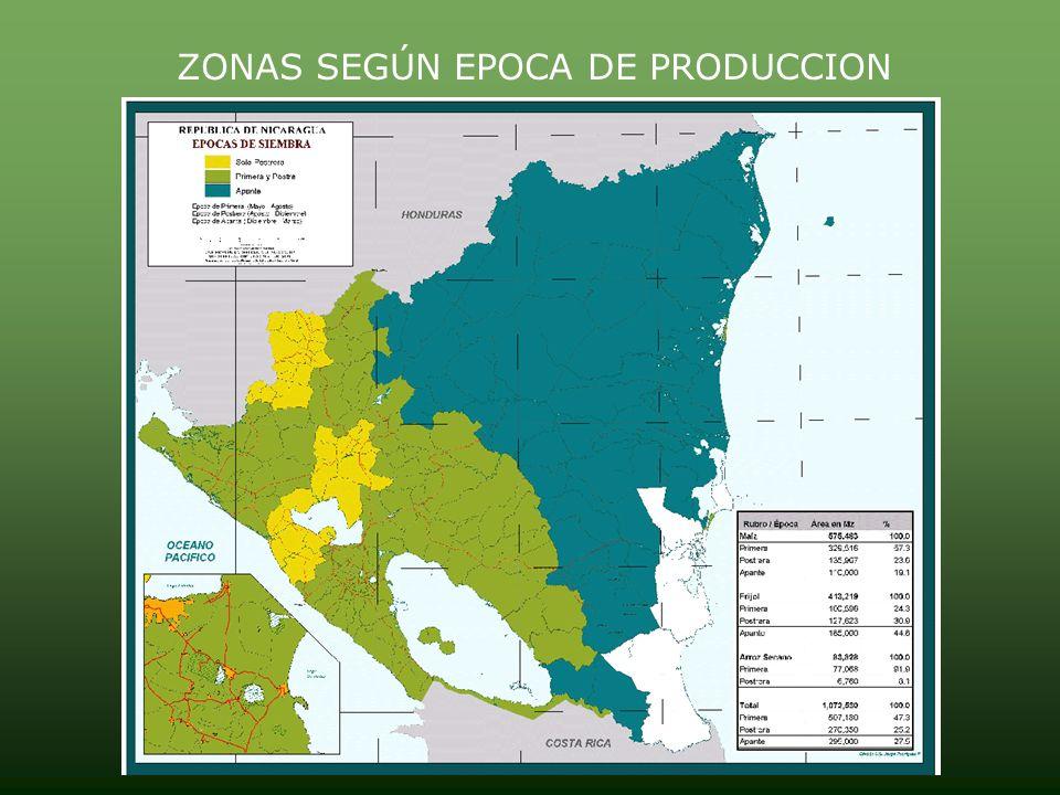 Area cosechada y Producción de rubros tradicionales de exportación Rubros Preliminar 2006/07Estimado 2007/08Variación % Área Cosechada Producción mil
