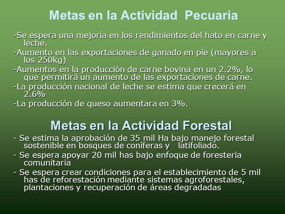 ZONAS SEGÚN EPOCA DE PRODUCCION