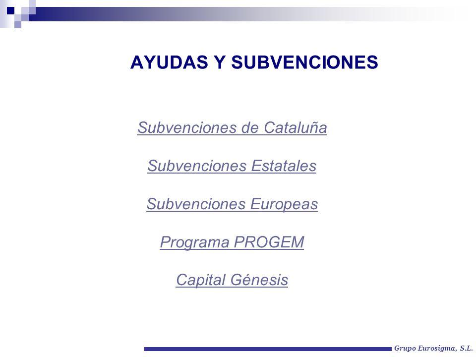 AYUDAS Y SUBVENCIONES Subvenciones de Cataluña Subvenciones Estatales Subvenciones Europeas Programa PROGEM Capital Génesis Grupo Eurosigma, S.L.