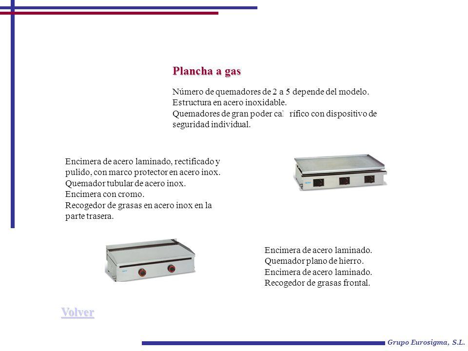 Grupo Eurosigma, S.L. Plancha a gas Número de quemadores de 2 a 5 depende del modelo. Estructura en acero inoxidable. Quemadores de gran poder caloríf