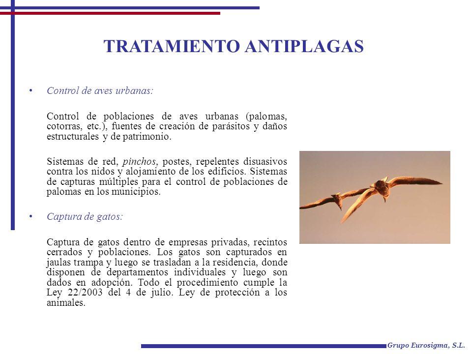 TRATAMIENTO ANTIPLAGAS Grupo Eurosigma, S.L. Control de aves urbanas: Control de poblaciones de aves urbanas (palomas, cotorras, etc.), fuentes de cre
