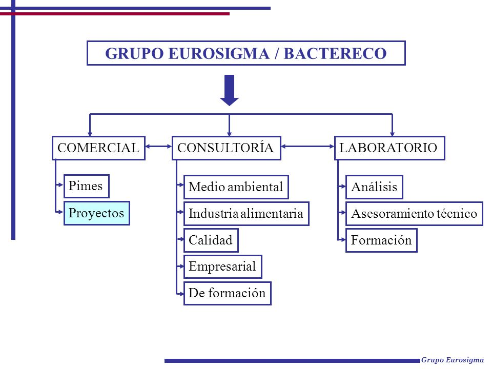 GRUPO EUROSIGMA / BACTERECO CONSULTORÍA LABORATORIOCOMERCIAL Proyectos Pimes Medio ambiental Industria alimentaria Calidad Empresarial De formación An