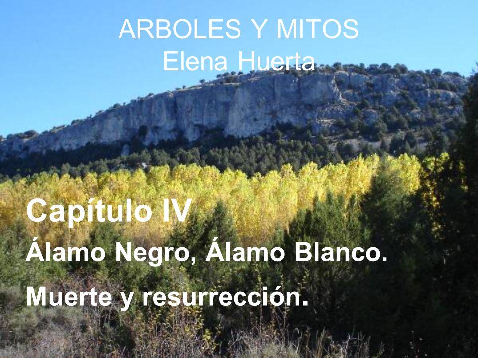 ARBOLES Y MITOS Elena Huerta Capítulo IV Álamo Negro, Álamo Blanco. Muerte y resurrección.