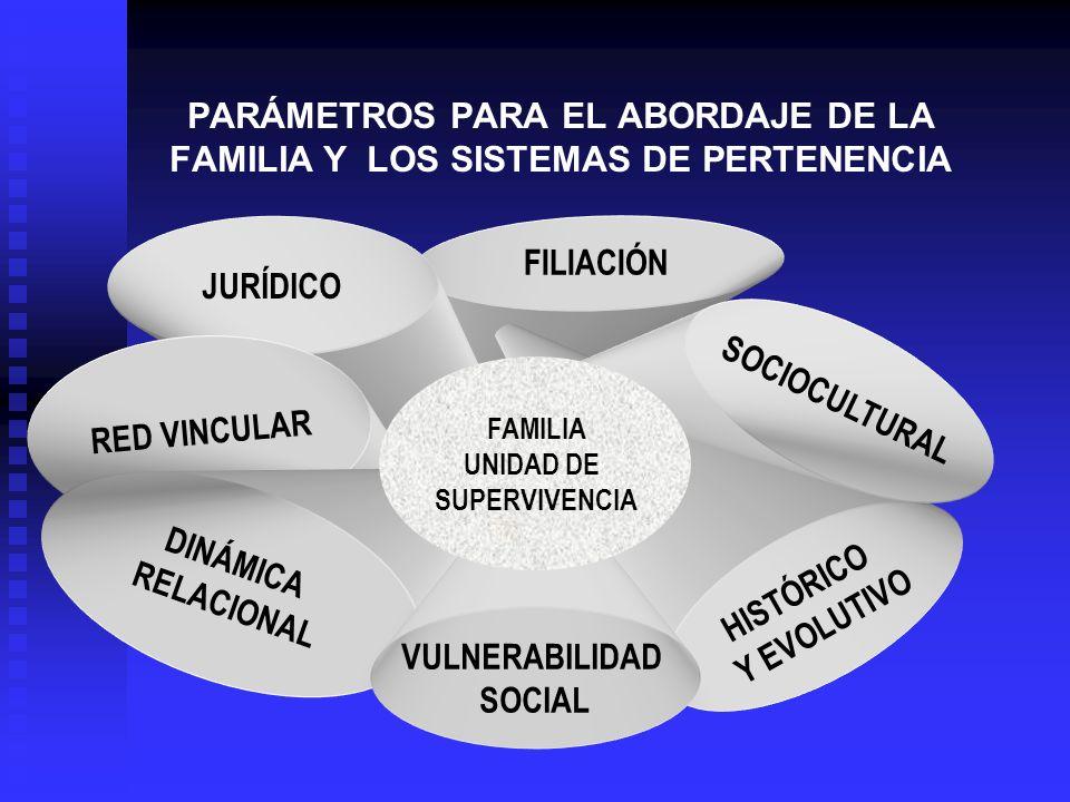 FILIACIÓN PARÁMETROS PARA EL ABORDAJE DE LA FAMILIA Y LOS SISTEMAS DE PERTENENCIA HISTÓRICO Y EVOLUTIVO SOCIOCULTURAL JURÍDICO RED VINCULAR DINÁMICA R
