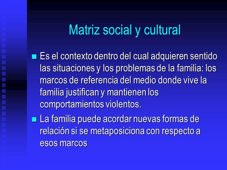 Matriz social y cultural Es el contexto dentro del cual adquieren sentido las situaciones y los problemas de la familia: los marcos de referencia del