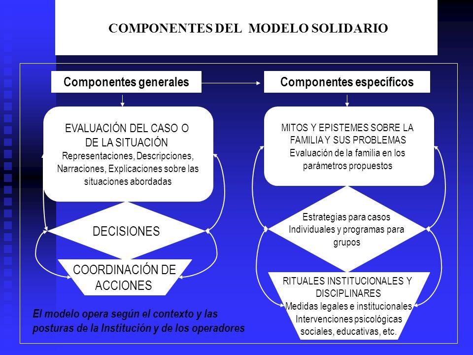COMPONENTES DEL MODELO SOLIDARIO DECISIONES EVALUACIÓN DEL CASO O DE LA SITUACIÓN Representaciones, Descripciones, Narraciones, Explicaciones sobre la
