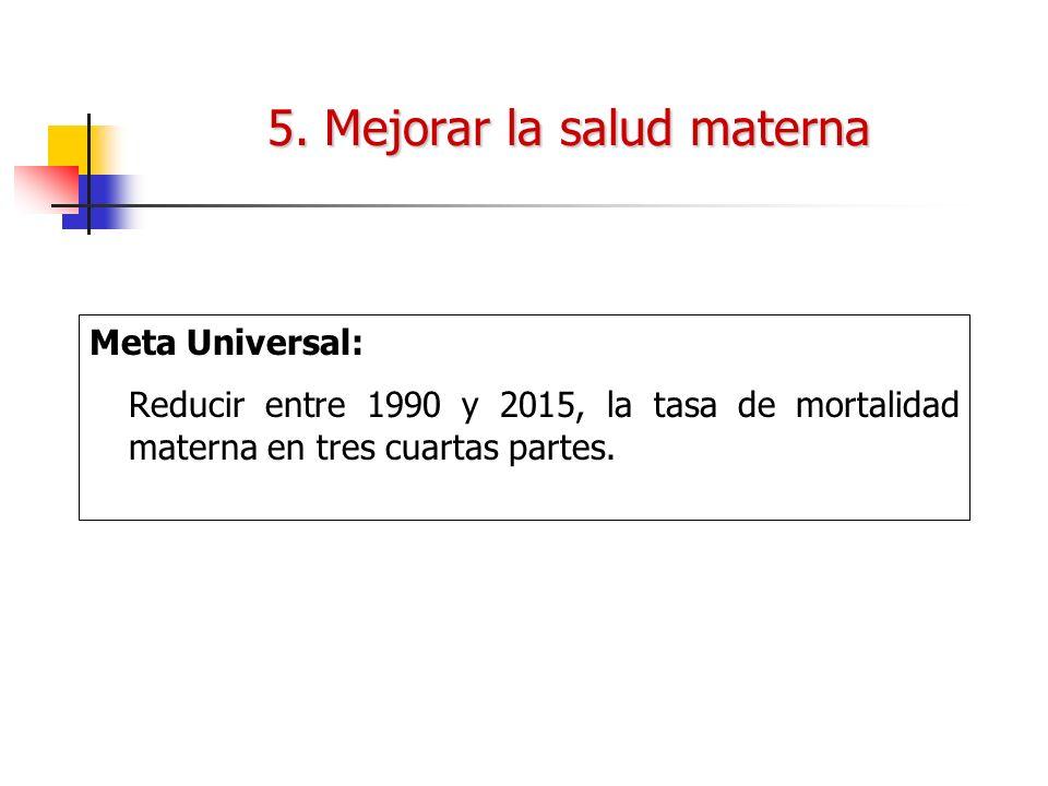 5. Mejorar la salud materna Meta Universal: Reducir entre 1990 y 2015, la tasa de mortalidad materna en tres cuartas partes.
