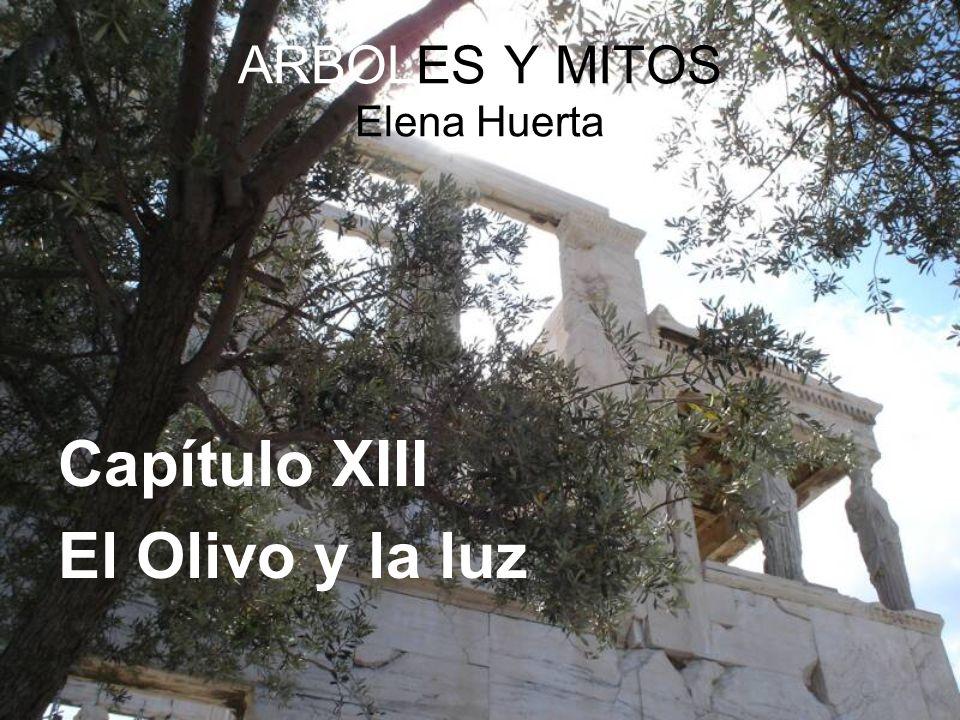 ARBOLES Y MITOS Elena Huerta Capítulo XIII El Olivo y la luz