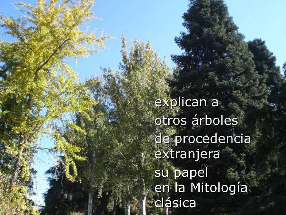 explican a otros árboles de procedencia extranjera su papel en la Mitología clásica