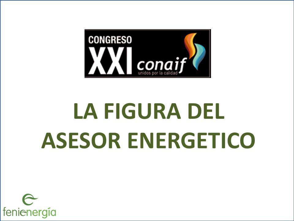 LA FIGURA DEL ASESOR ENERGETICO
