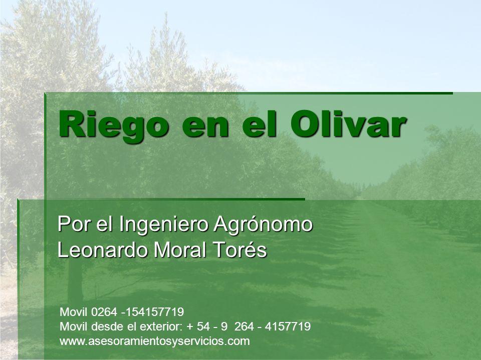 Riego en el Olivar Por el Ingeniero Agrónomo Leonardo Moral Torés Movil 0264 -154157719 Movil desde el exterior: + 54 - 9 264 - 4157719 www.asesoramie