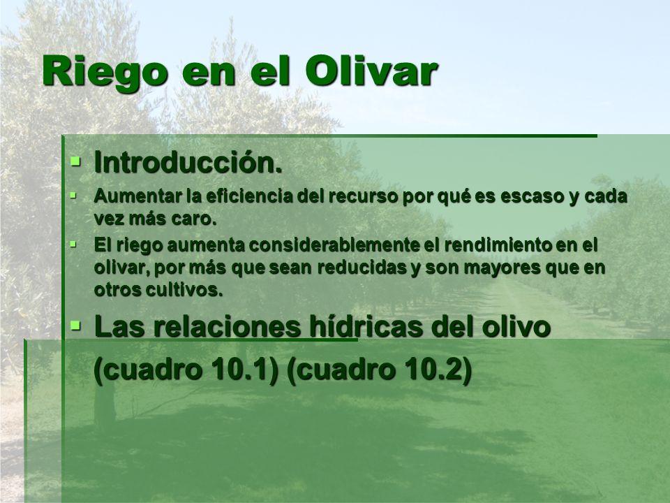 Riego en el Olivar Introducción. Introducción. Aumentar la eficiencia del recurso por qué es escaso y cada vez más caro. Aumentar la eficiencia del re