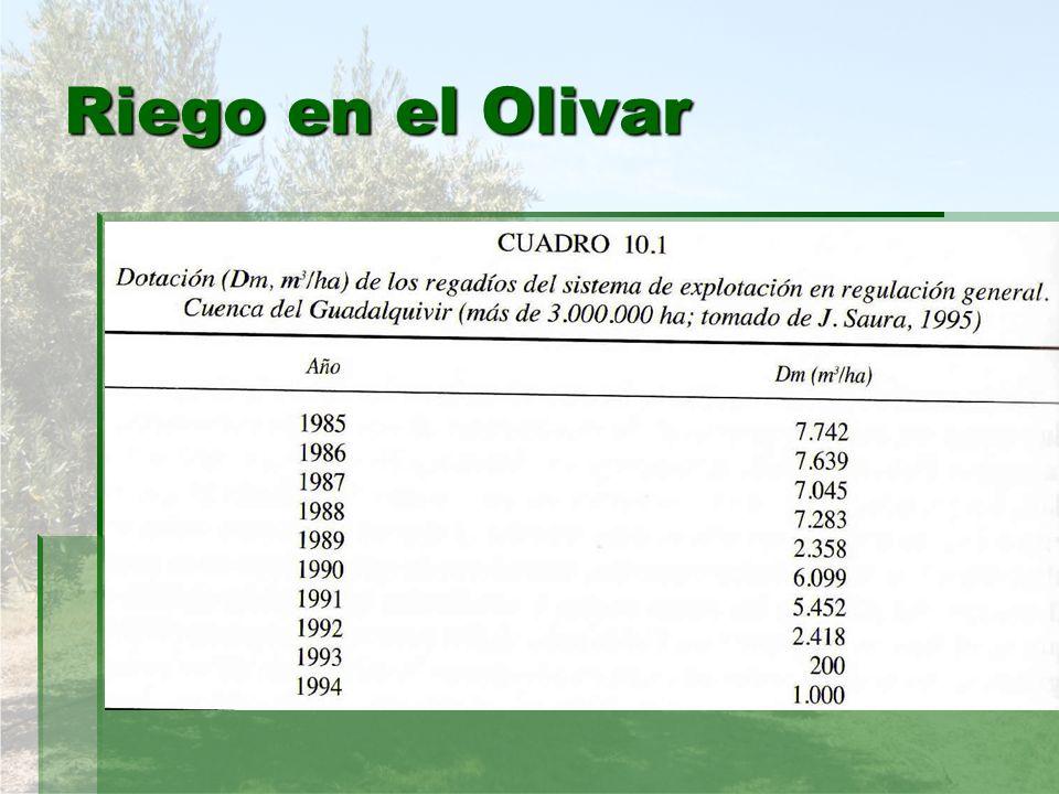 Riego en el Olivar