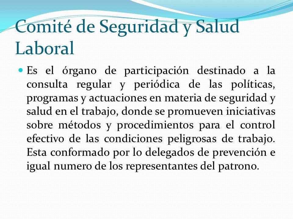Comité de Seguridad y Salud Laboral Es el órgano de participación destinado a la consulta regular y periódica de las políticas, programas y actuacione