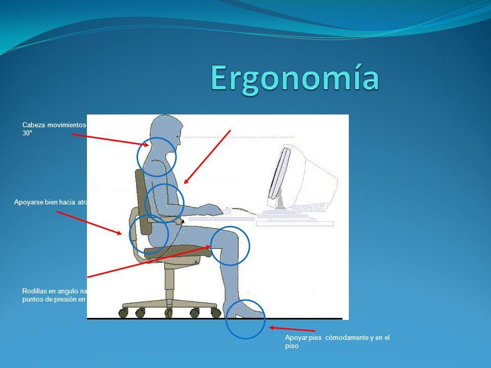 Cabeza movimientos frente monitor 30° >Apoyo del brazo 90° - 130° Apoyarse bien hacia atrás de su silla Apoyar pies cómodamente y en el piso Rodillas