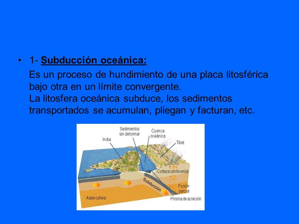 1- Subducción oceánica: Es un proceso de hundimiento de una placa litosférica bajo otra en un límite convergente. La litosfera oceánica subduce, los s