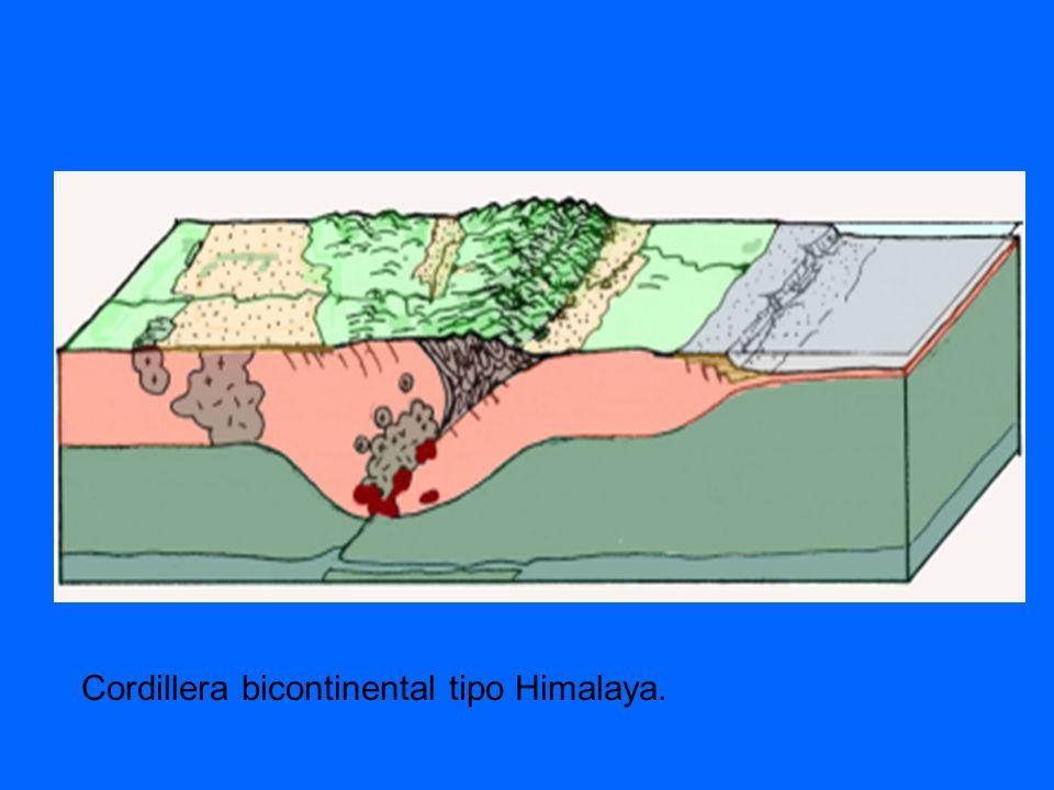 Imagen de una obducción o colisión continental donde se ha formado una cordillera intercontinental, tipo Himalaya