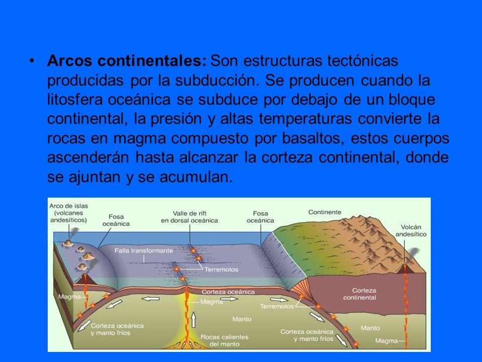 Arcos continentales: Son estructuras tectónicas producidas por la subducción. Se producen cuando la litosfera oceánica se subduce por debajo de un blo