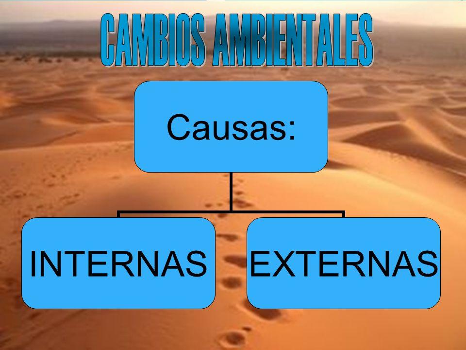 Causas: INTERNASEXTERNAS