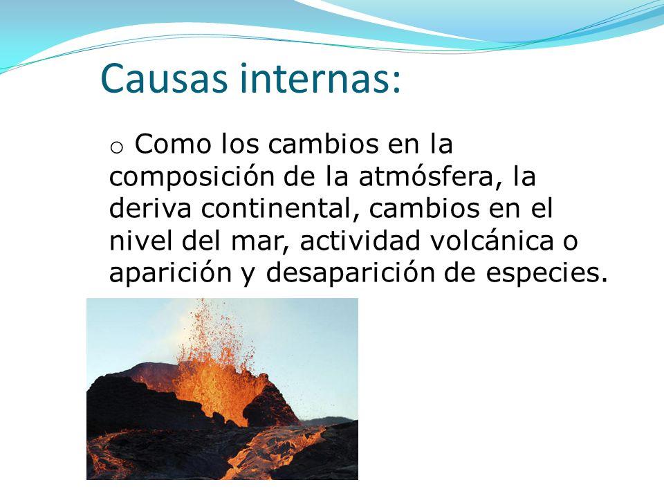 Causas internas: o Como los cambios en la composición de la atmósfera, la deriva continental, cambios en el nivel del mar, actividad volcánica o apari