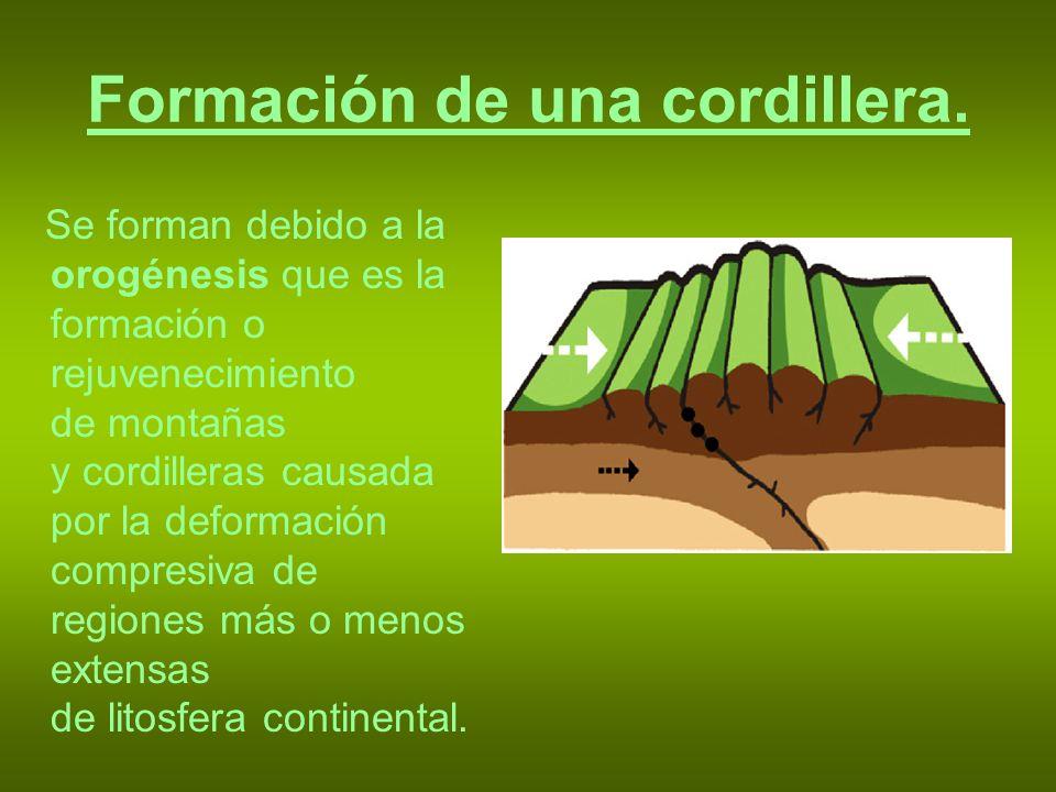 Formación de una cordillera. Se forman debido a la orogénesis que es la formación o rejuvenecimiento de montañas y cordilleras causada por la deformac