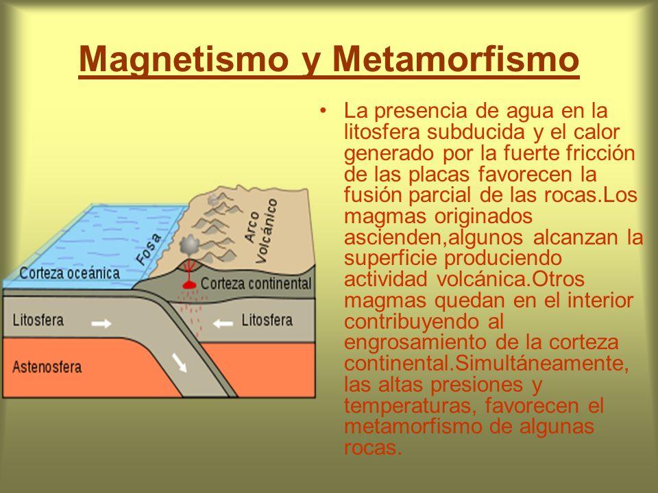 Magnetismo y Metamorfismo La presencia de agua en la litosfera subducida y el calor generado por la fuerte fricción de las placas favorecen la fusión