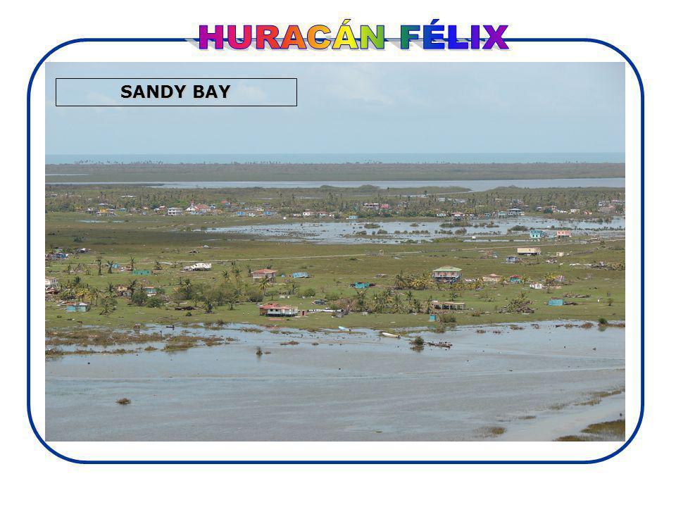 Daño en 680,000(C) y 214,900 (P) para un total de 894,900 hectáreas de bosques de la cobertura vegetal latífoliada de pino y manglar.