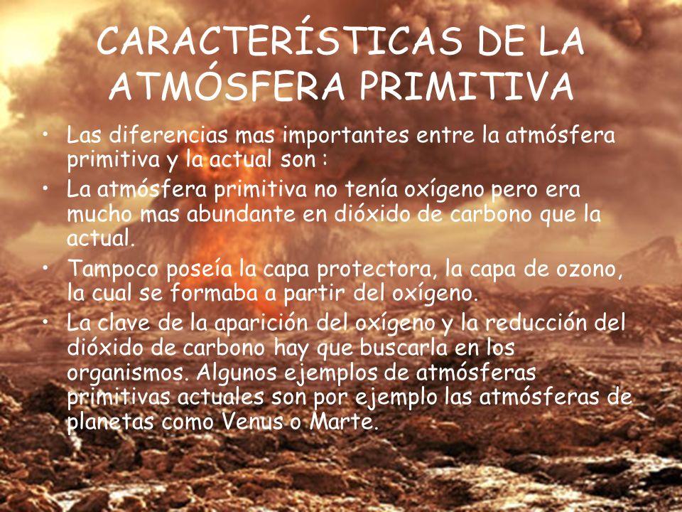CARACTERÍSTICAS DE LA ATMÓSFERA PRIMITIVA Las diferencias mas importantes entre la atmósfera primitiva y la actual son : La atmósfera primitiva no tenía oxígeno pero era mucho mas abundante en dióxido de carbono que la actual.